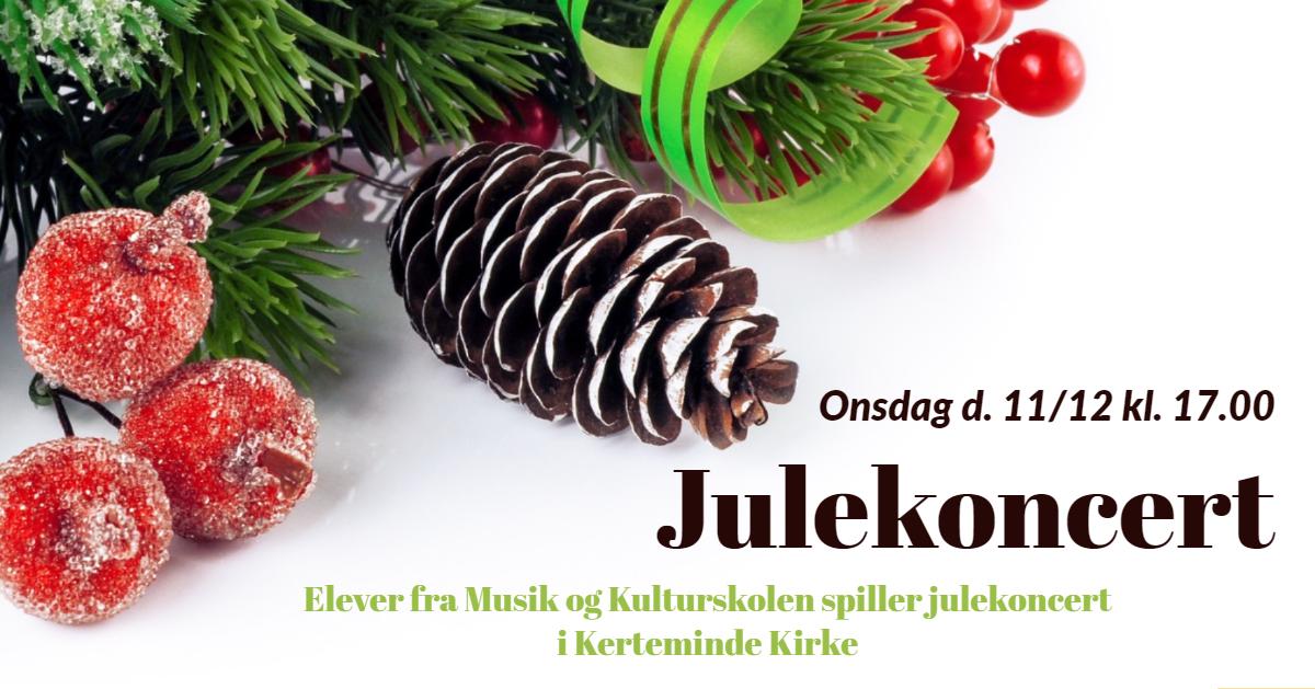 Julekoncert FB 2019 (2)